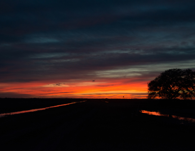 Sunset over the rice canals, Brazoria County, Texas