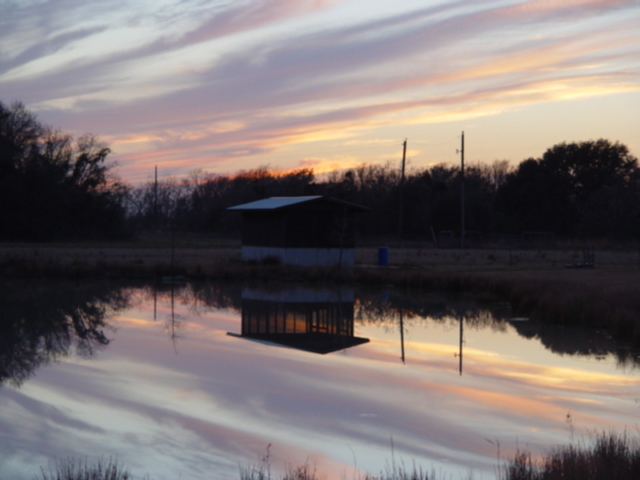 Sunset reflections in pond in Brazoria County, Texas