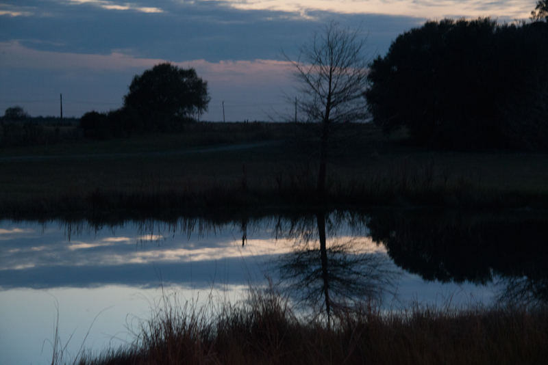 Twilight at a pond in Brazoria County Texas